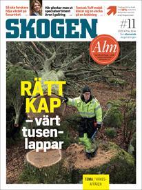 Tidningen SKOGEN 10/2020