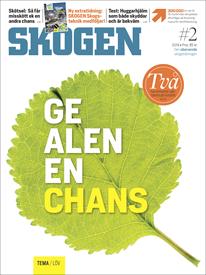 Tidningen SKOGEN 2/2019