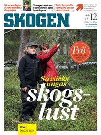 Tidningen SKOGEN 12/2019