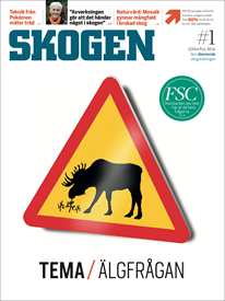 Tidningen SKOGEN 1/2019