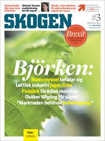 Tidningen SKOGEN 3/2020