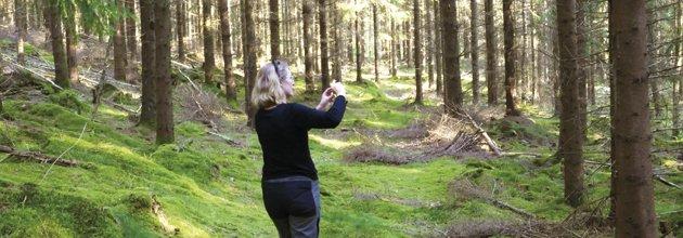 Kvinna mäter träd med en mobiltelefon