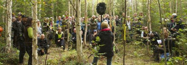 Riksdagsledamöter, företagsledare, stabsfolk, forskare, myndighetsrepresentanter och skogsförvaltande personal dominerade exkursionen.