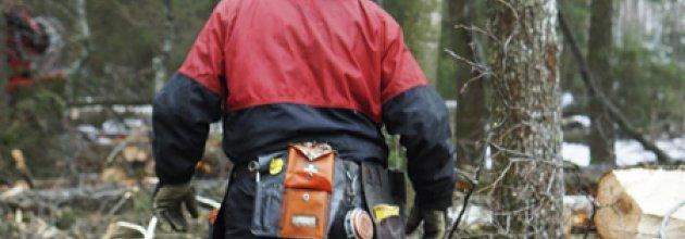 Första förband på skogsarbetare