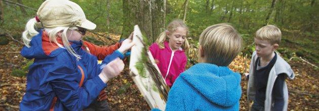 Barn i skogen, utomhuspedagogik
