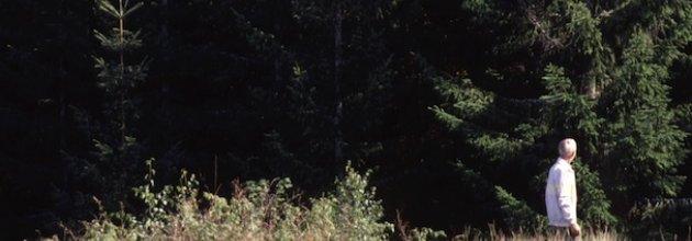 skogsägare,skogsbruk