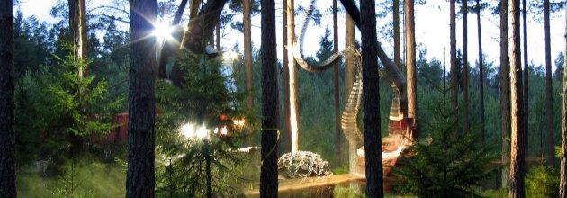 slutavverkning,skogsmaskin