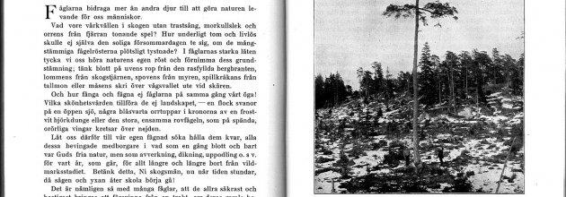 Tidningen SKOGEN, årgång 1, november 1914.