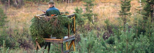 Jägare står i ett jakttorn