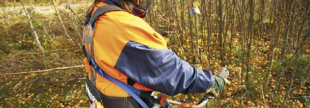 Kvinna röjer skog