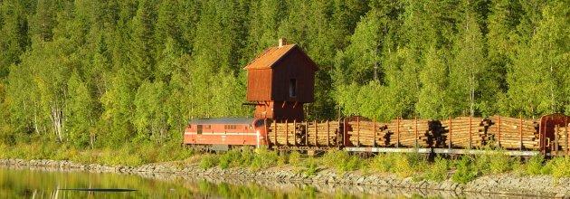 Som på räls.  Ett väl underhållet järnvägsnät är en förutsättning för svensk skogsnäring.