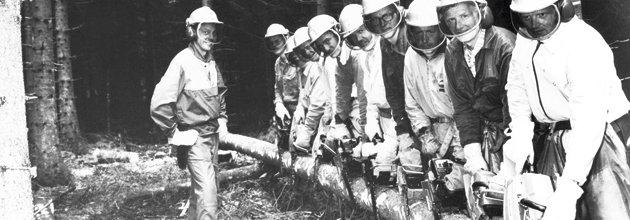 Flera män står uppradade med motorsågorna lutade mot en lång liggande stock.
