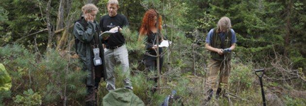 Rikskogstaxeringen på besök
