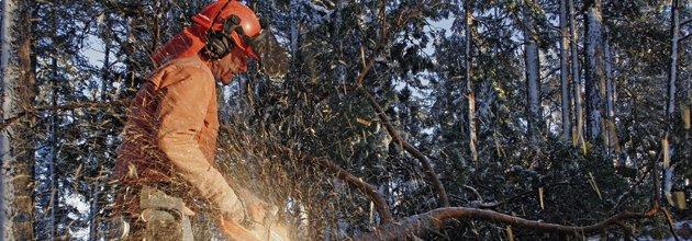 Skogsarbetar sågar med visiret uppe.