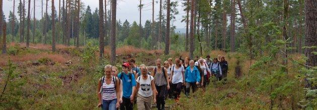 Kursen genomförs för femte året i rad av studenter på skogsmästar- och jägmästarprogrammen. Foto Oscar Gustaffson