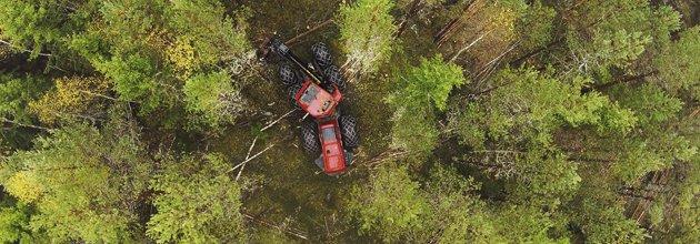 Från luften, gallringsskördare i skog.