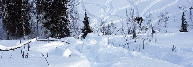 Skoterspår i snön