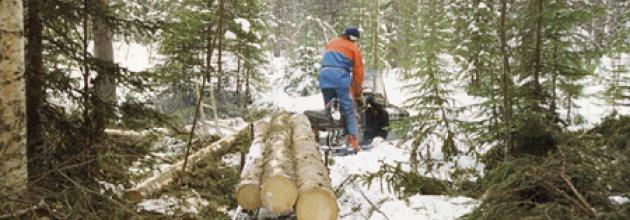 Snöskoter i skogsbruket