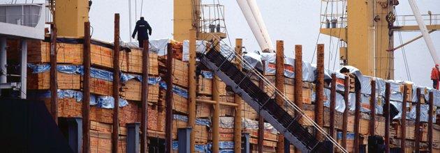 Lastfartyg lastat med trävaror